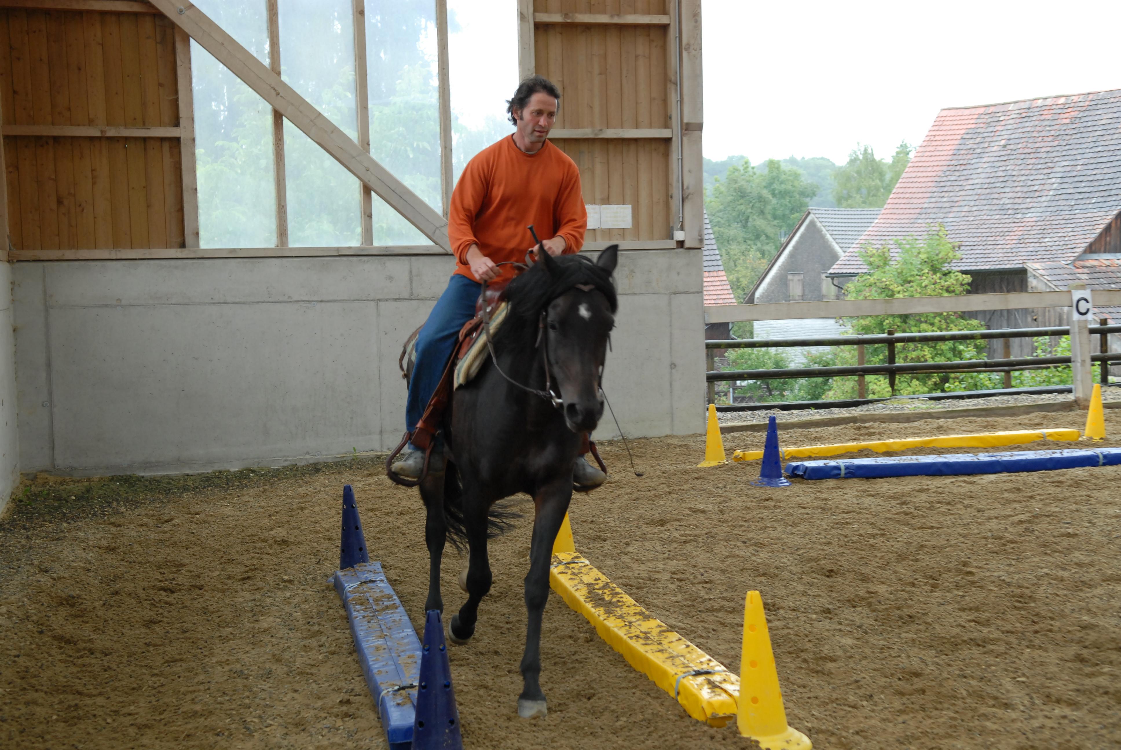 Tolle Assistent Pferdetrainer Lebenslauf Fotos - Beispiel Business ...